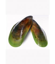 Grünschalmuschel 1/2 Schale 30/50Stk 1Kg Nzl