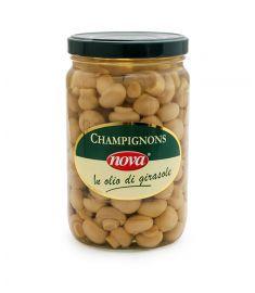 Champignons Ganz 1,6Kg in Sonnenblumenöl NOVA