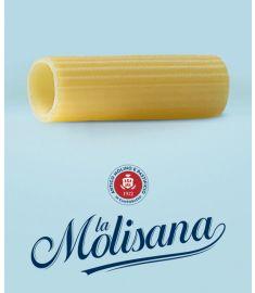Rigatoni N°31 12x1Kg LA MOLISANA