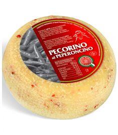 Pecorino al Peperoncino Mini Schafskäse (1/2 Monate)  1,2Kg CASEIFICIO MAREMMA