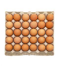 Frische Eier GELB++ 53/63 60Stk VALDORA