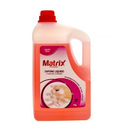 Fettlöser 5L MATRIX