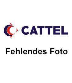 Sarde geköpft 9,7Kg Kroatien IQF FAO37
